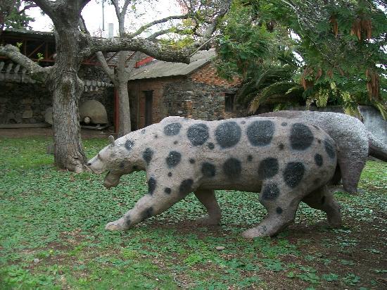 Museus em col nia for Mobilia zoo
